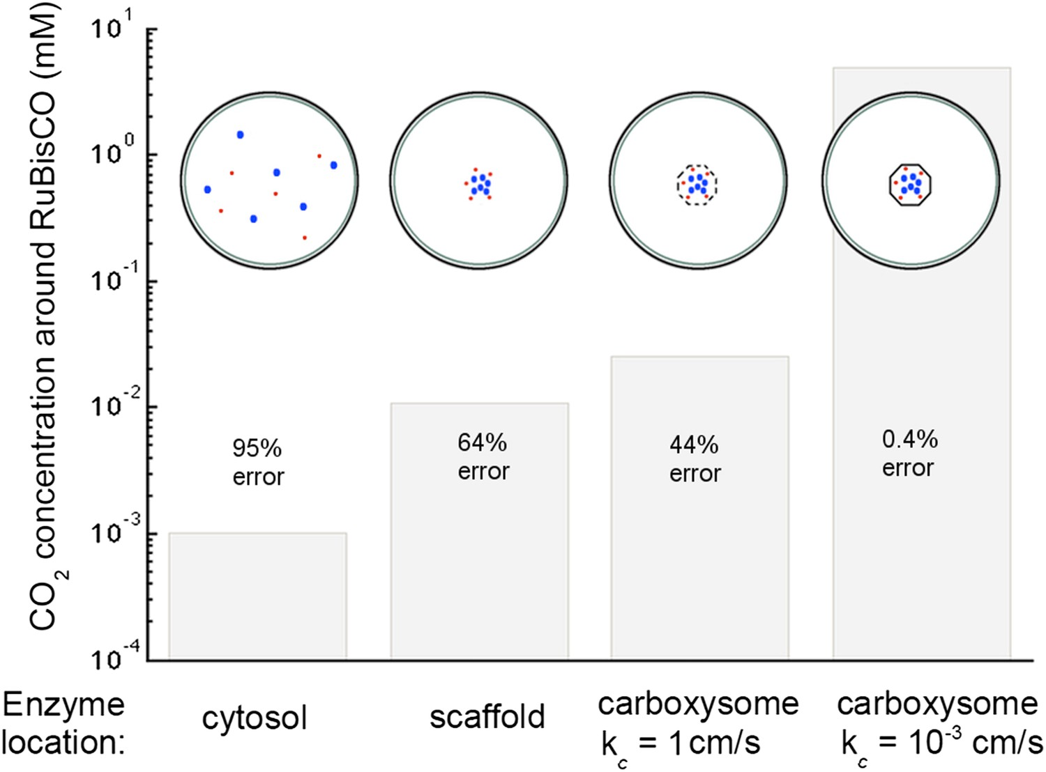 hight resolution of concentration of co2 achieved through various cellular organizations of enzymes where we have selected the hco 3 transport level such that the hco 3