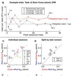 design of psychophysical experiments presented in figure 1  [ 845 x 1500 Pixel ]