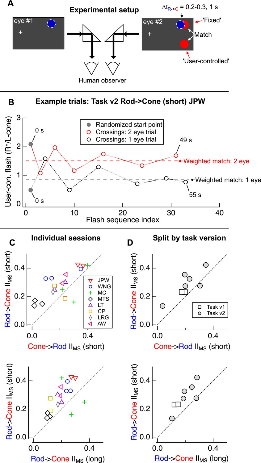 hight resolution of design of psychophysical experiments presented in figure 1
