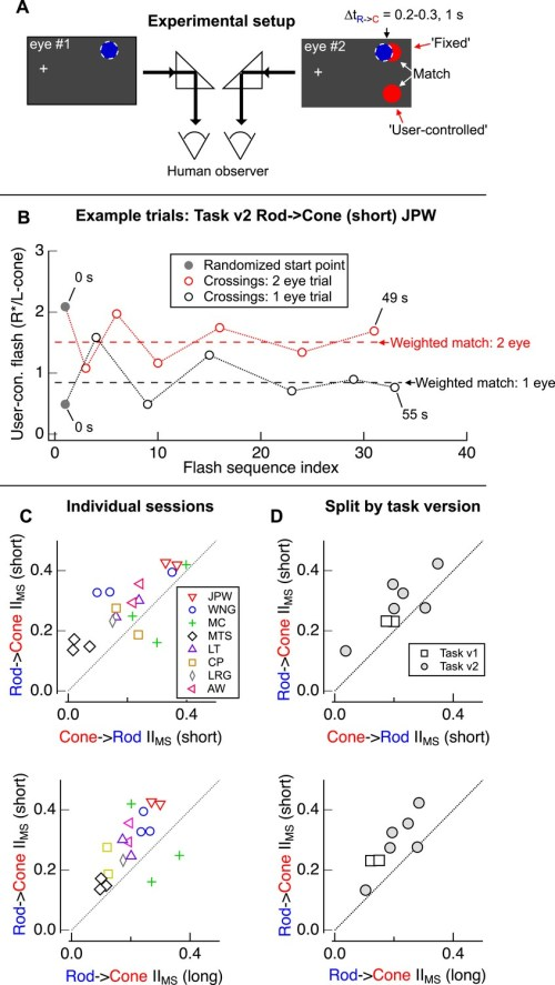 small resolution of design of psychophysical experiments presented in figure 1