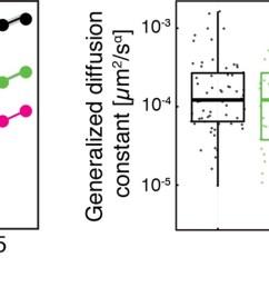same data as in figure 1 figure supplement 2 shown as log log plots left  [ 1500 x 536 Pixel ]