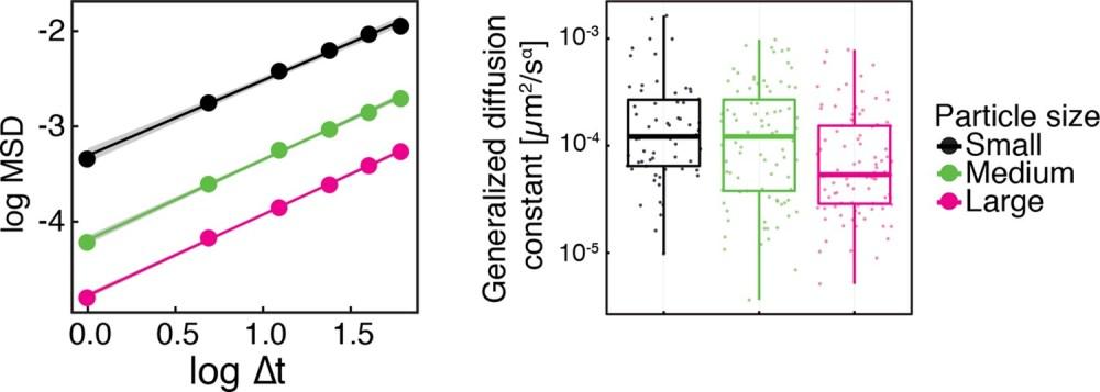 medium resolution of same data as in figure 1 figure supplement 2 shown as log log plots left