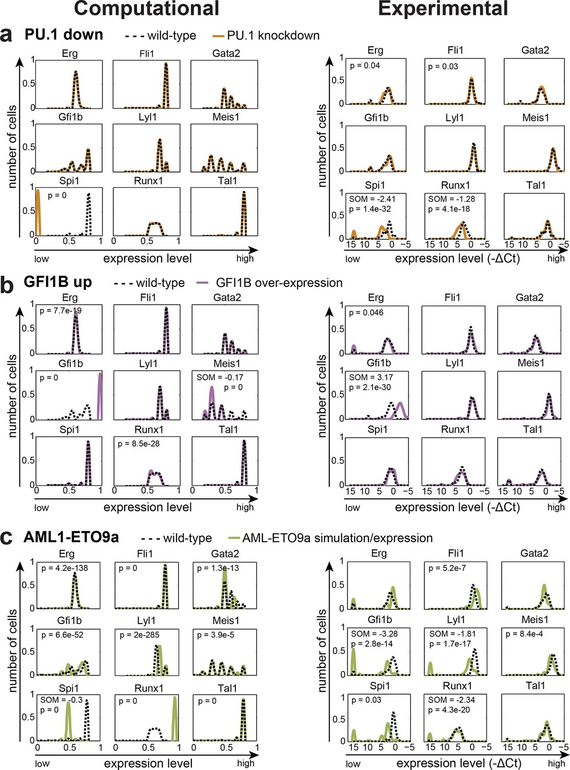 An Experimentally Validated Network Of Nine Haematopoietic Transcription Factors Reveals