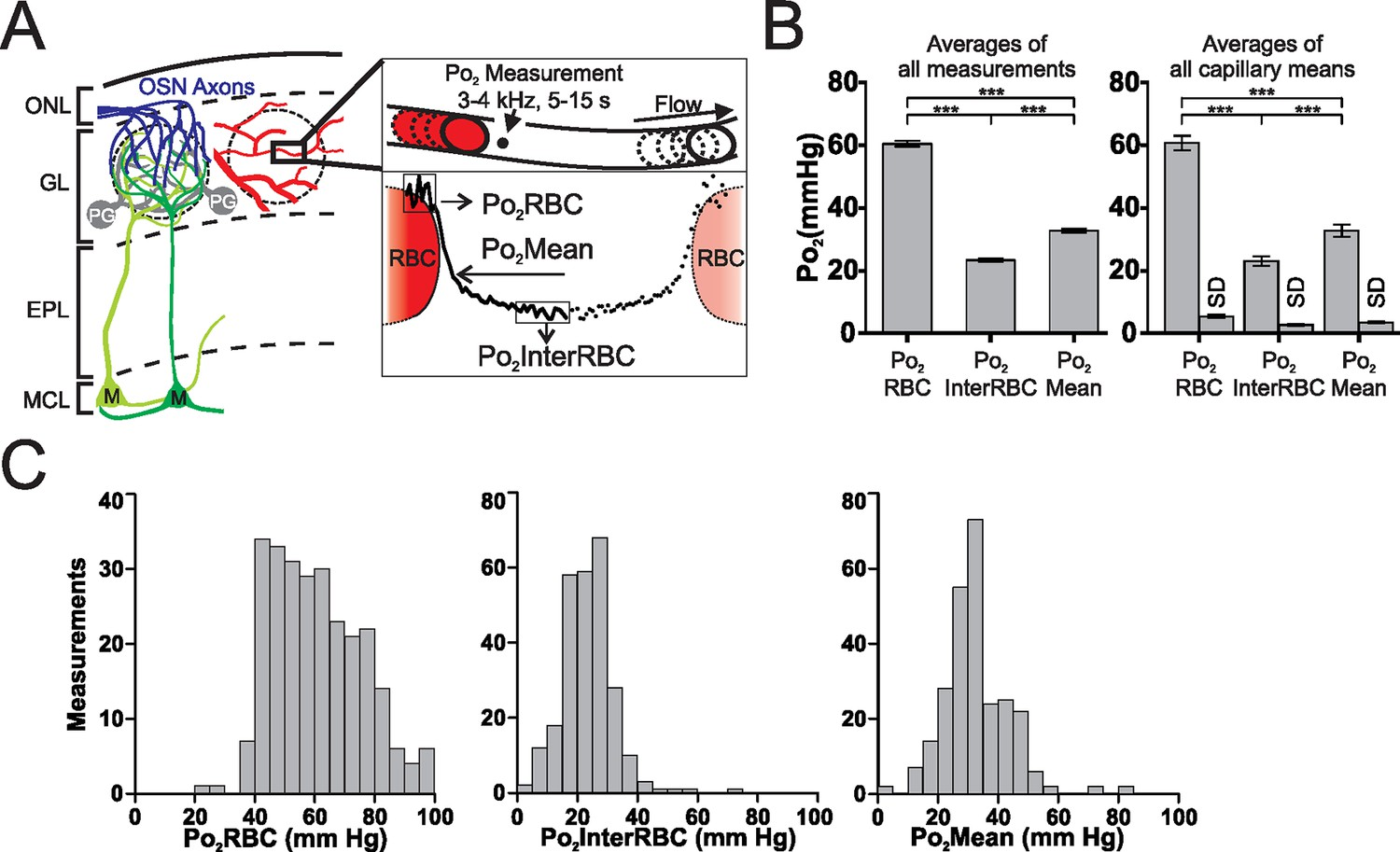 Mapping Oxygen Concentration In The Awake Mouse Brain