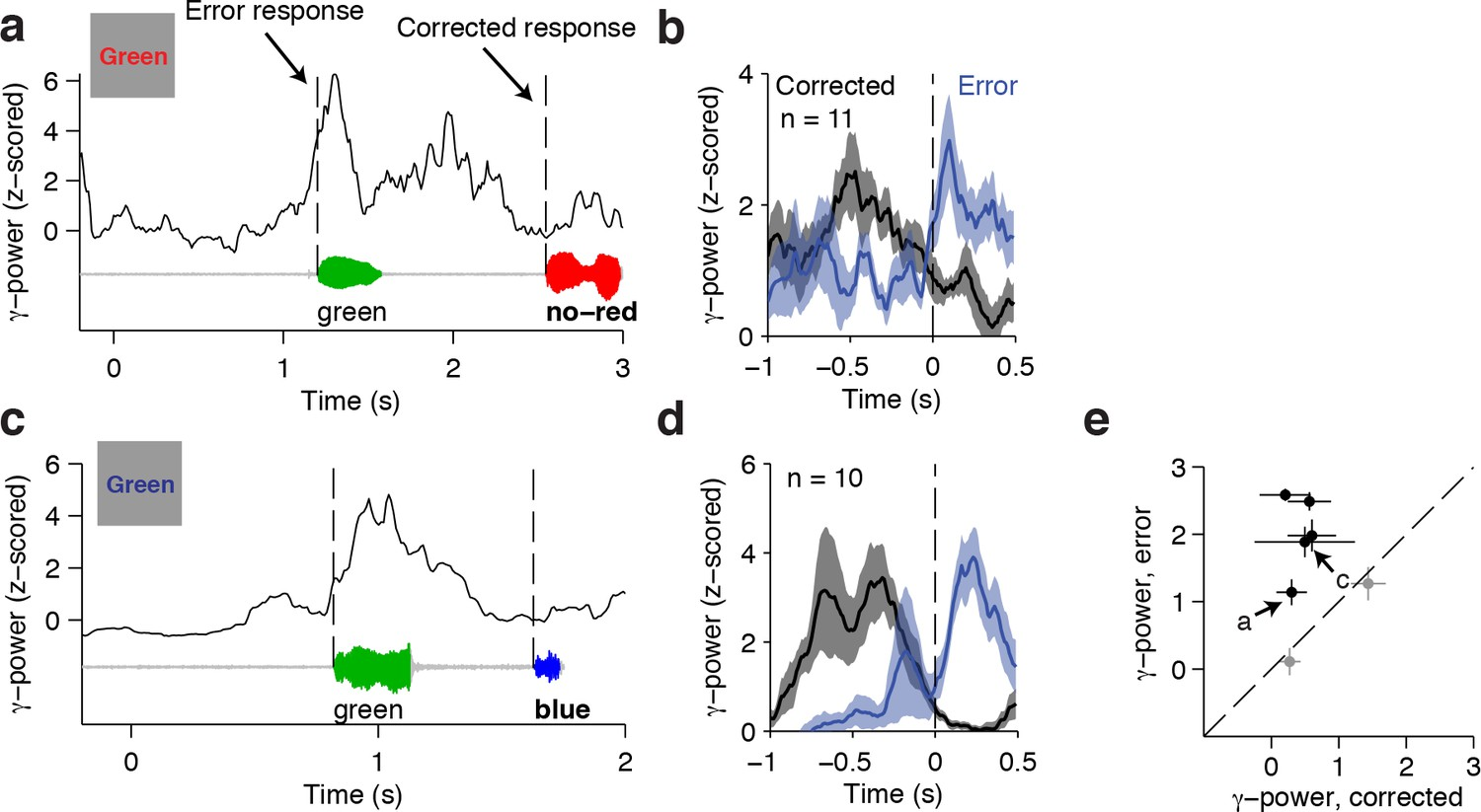 Cascade of neural processing orchestrates cognitive