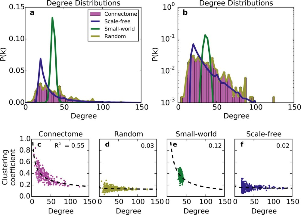 medium resolution of standard graph models vary in their ability to recreate the mouse connectome s degree distribution and relationship between degree and clustering