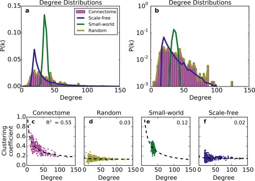 small resolution of standard graph models vary in their ability to recreate the mouse connectome s degree distribution and relationship between degree and clustering