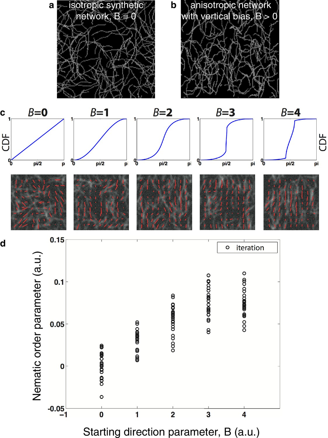 Figures and data in Cortical flow aligns actin filaments