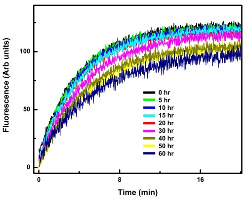 small resolution of the g i1 ric 8a complex is stable over the period in which the hdx experiments were performed