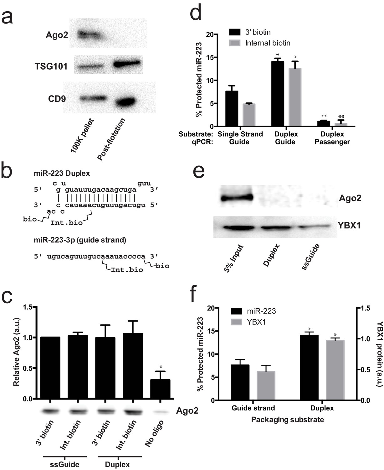 hight resolution of lack of evidence for a specific role for ago2 in sorting mir 223 into exosomes