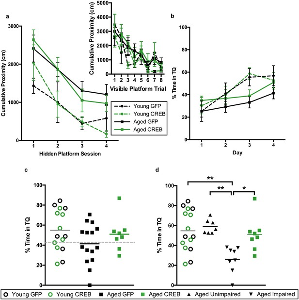 CREB overexpression in dorsal CA1 ameliorates long-term