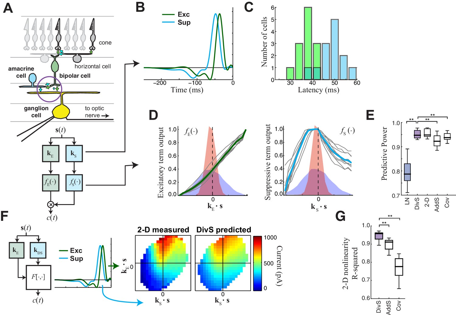 hight resolution of the divisive suppression divs model of synaptic currents
