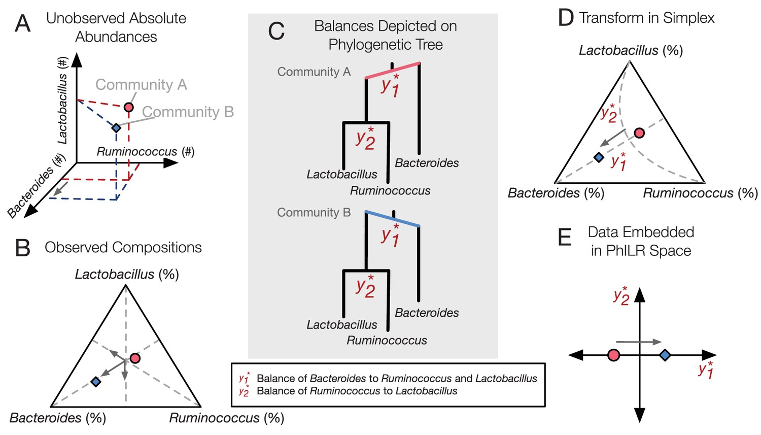 A phylogenetic transform enhances analysis of