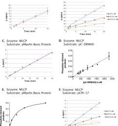 phosphatase activities of the mlcp preparation shown in figure 2  [ 1256 x 1500 Pixel ]