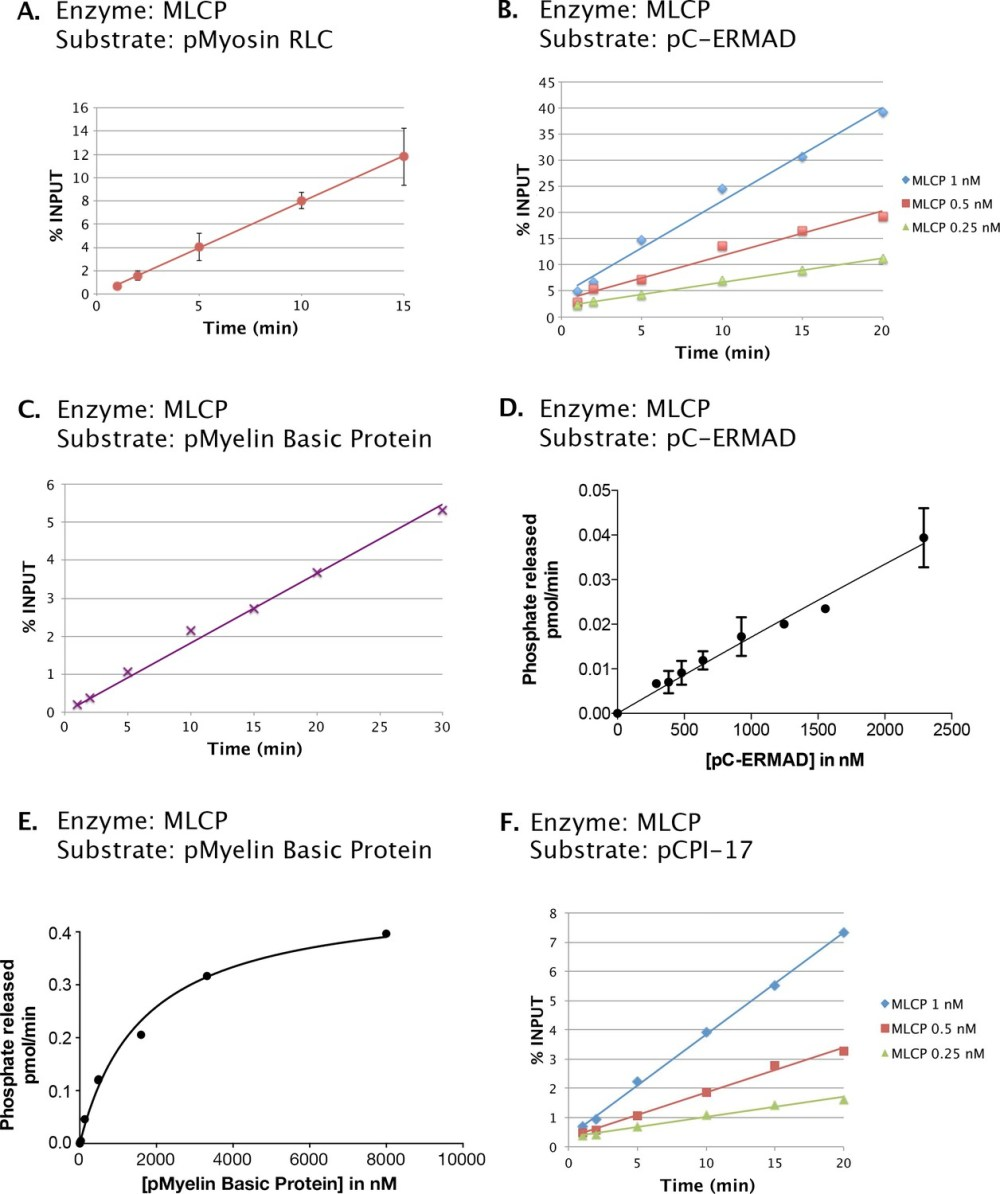 medium resolution of phosphatase activities of the mlcp preparation shown in figure 2