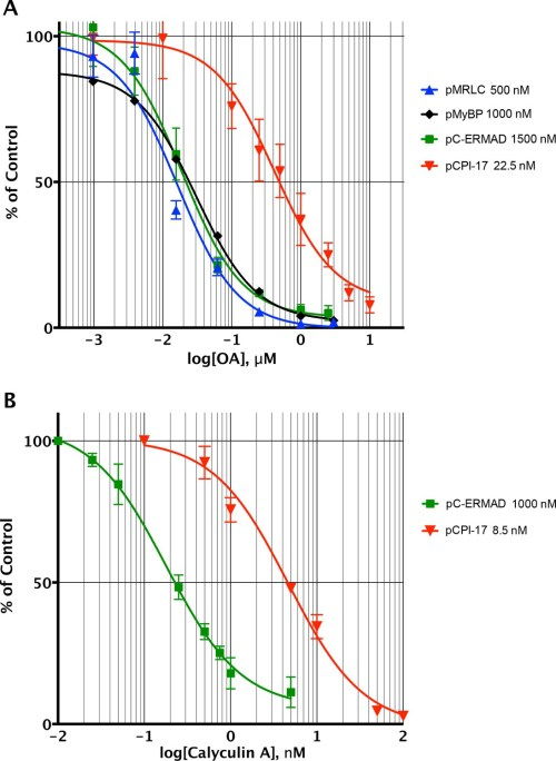small resolution of determining the pcpi 17 mlcp km by competitive inhibition