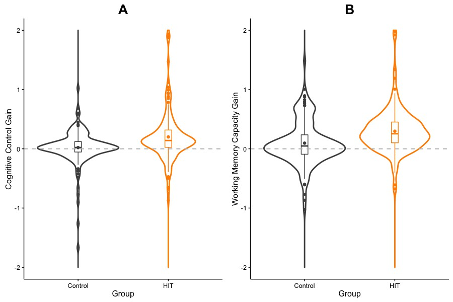 High-intensity training enhances executive function in