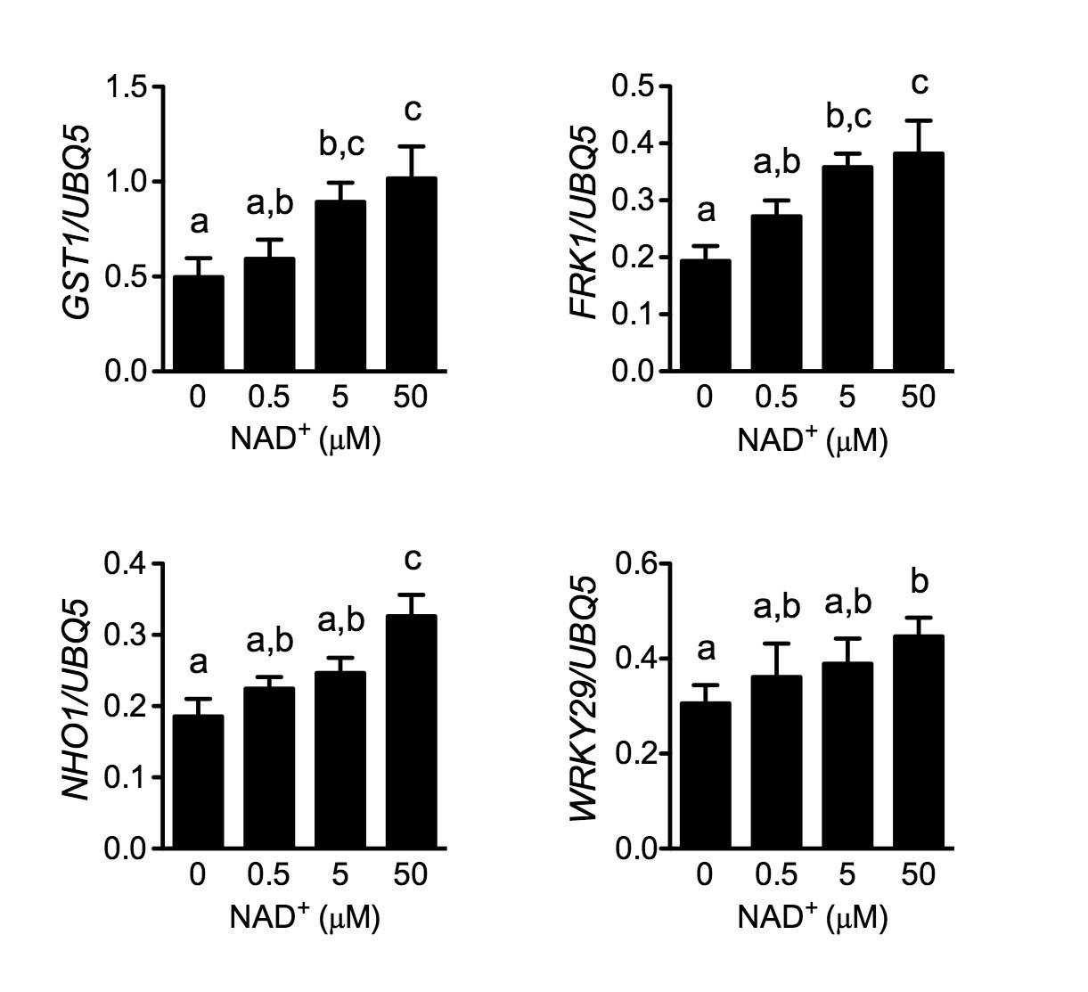 Figures and data in A lectin receptor kinase as a