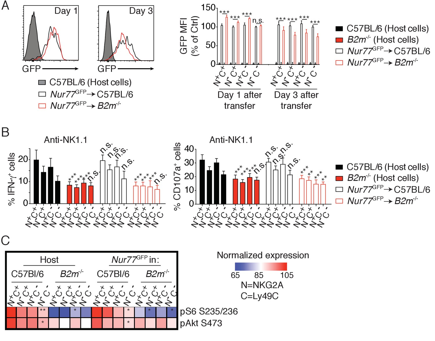 High Mtor Activity Is A Hallmark Of Reactive Natural Killer Cells And Amplifies Early Signaling