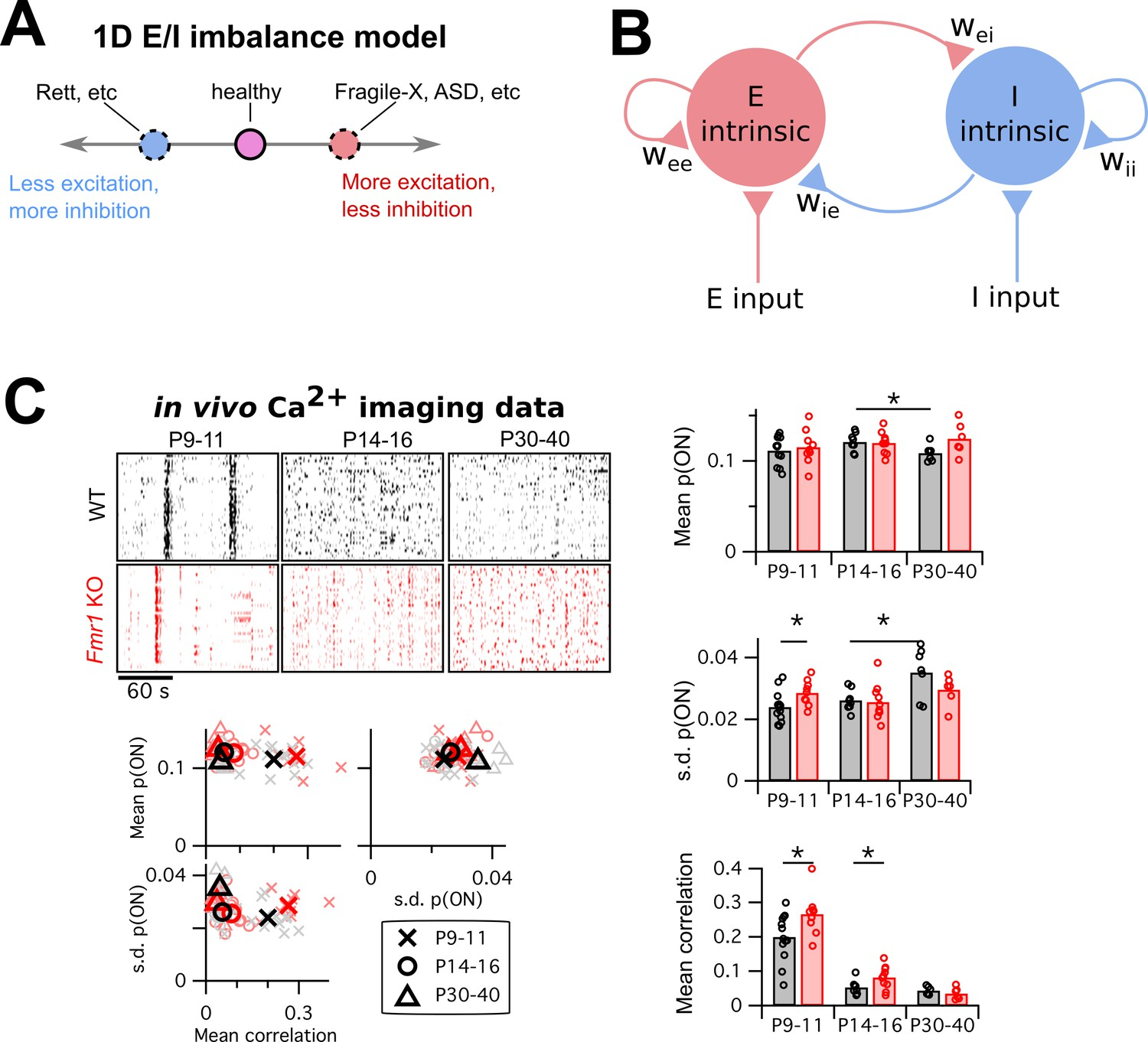 hight resolution of mismatch between the e i imbalance model s unidimesionality and the multiple changes in circuit activity in fragile x mouse models