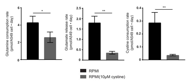 Figures and data in Environmental cystine drives glutamine