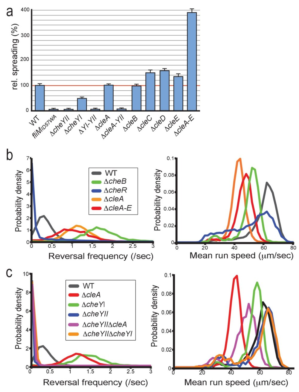 medium resolution of clea tunes the flagellar motor by interfering with the chemotaxis response