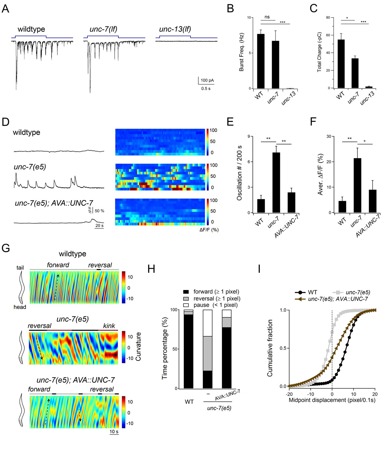 hight resolution of descending premotor ins ava exert dual modulation inhibition and potentiation of a mn s oscillatory activity to control the reversal motor state