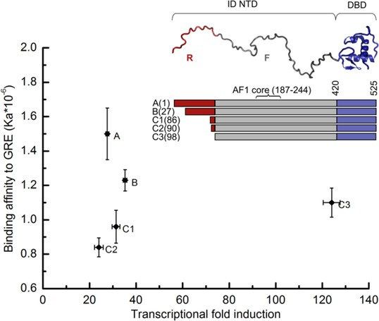 Genetically tunable frustration controls allostery in an