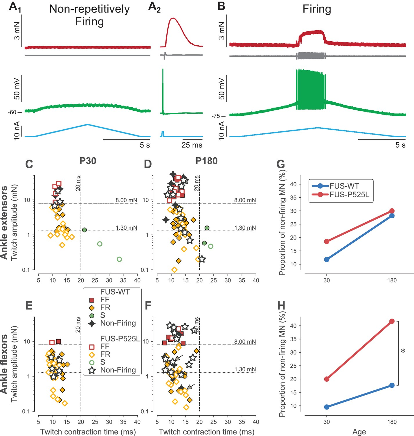 hight resolution of loss of repetitive firing in a subpopulation of cells of fus mice