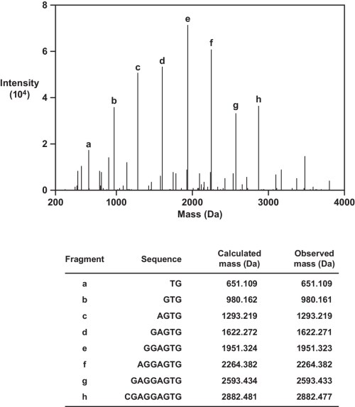 small resolution of high resolution ms ms analysis of reverse transcription product