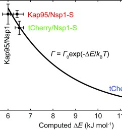 experimental event rate math processing error 0 versus the computed energy barrier e for tcherry and kap95 in nsp1 and nsp1 s pores  [ 1318 x 917 Pixel ]