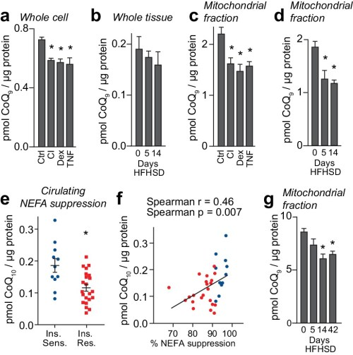small resolution of loss of mitochondrial coenzyme q in insulin resistant adipose and muscle tissue
