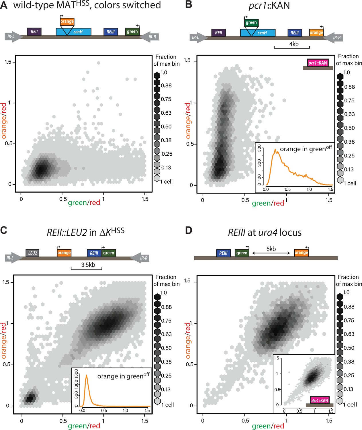 hight resolution of heterochromatin spreading characteristics of cis acting elements at the tightly repressed mat locus