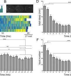 prolonged monitoring of larval behavior in larvalodge devices  [ 1500 x 915 Pixel ]