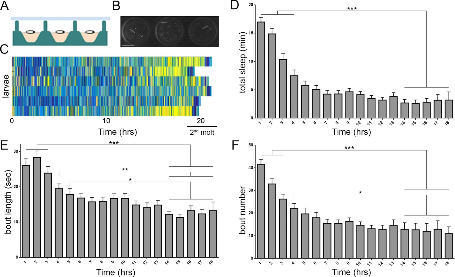 hight resolution of prolonged monitoring of larval behavior in larvalodge devices