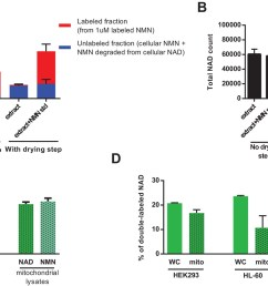 direct injection of methanolic extracts reveals preferential labeling and mitochondrial uptake of nad over nmn  [ 1500 x 963 Pixel ]