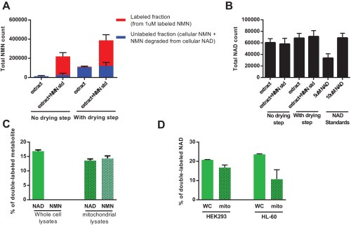 small resolution of direct injection of methanolic extracts reveals preferential labeling and mitochondrial uptake of nad over nmn