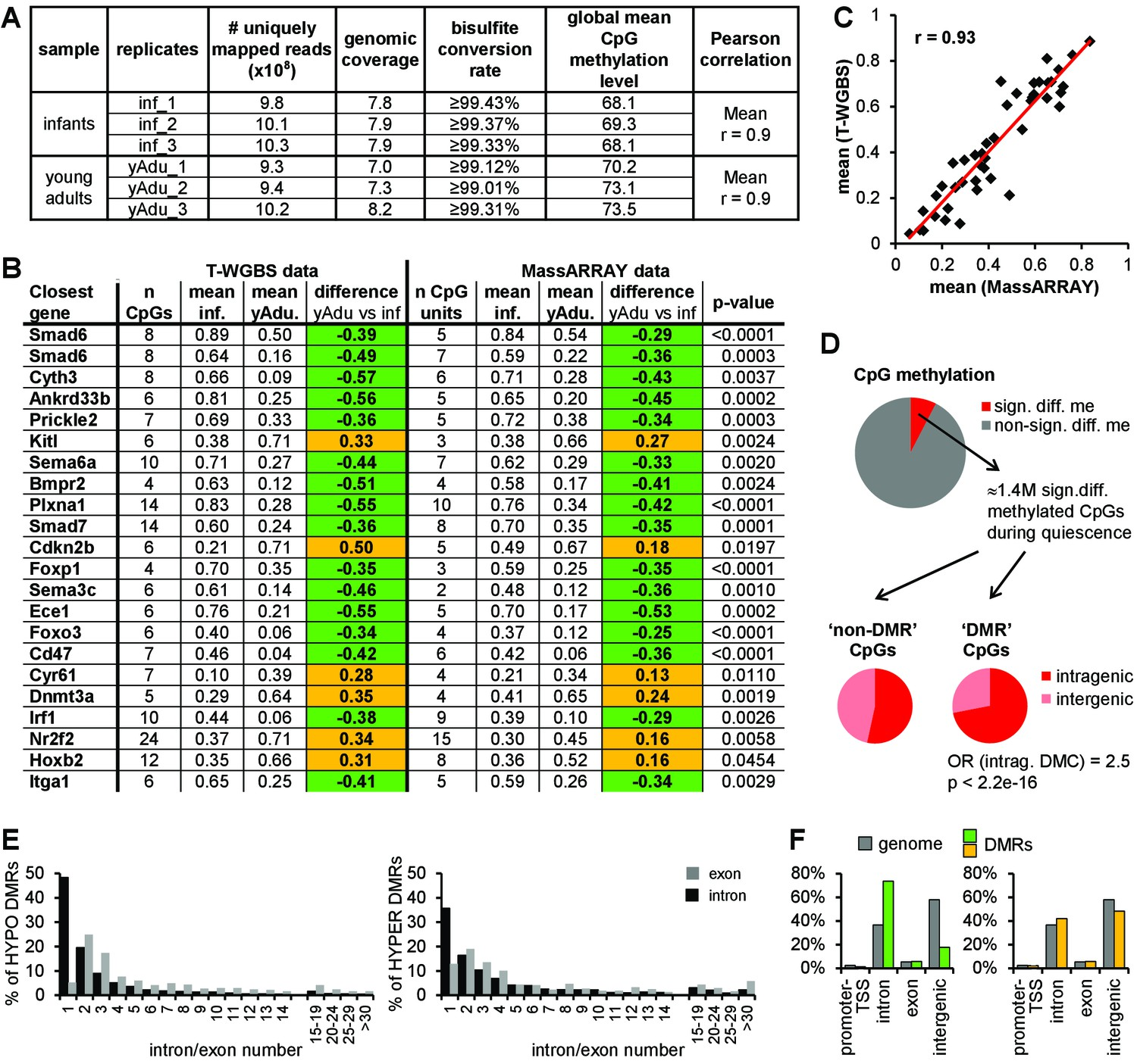 hight resolution of dna methylation profiling of lung ec during transition to vascular quiescence