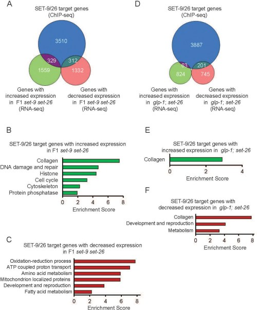 small resolution of binding of set 9 and set 26 regulate the rna expression of specific target genes a venn diagram