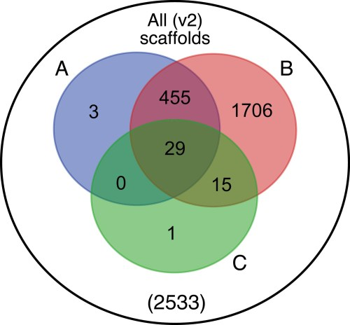 small resolution of venn diagram representation of blobtools taxonomic annotation filtering approach for ppyr1 2 scaffolds