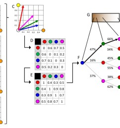 schematic representation of diffusion map embedding  [ 1500 x 680 Pixel ]