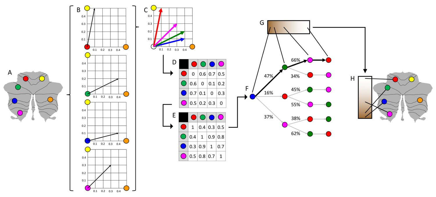 hight resolution of schematic representation of diffusion map embedding