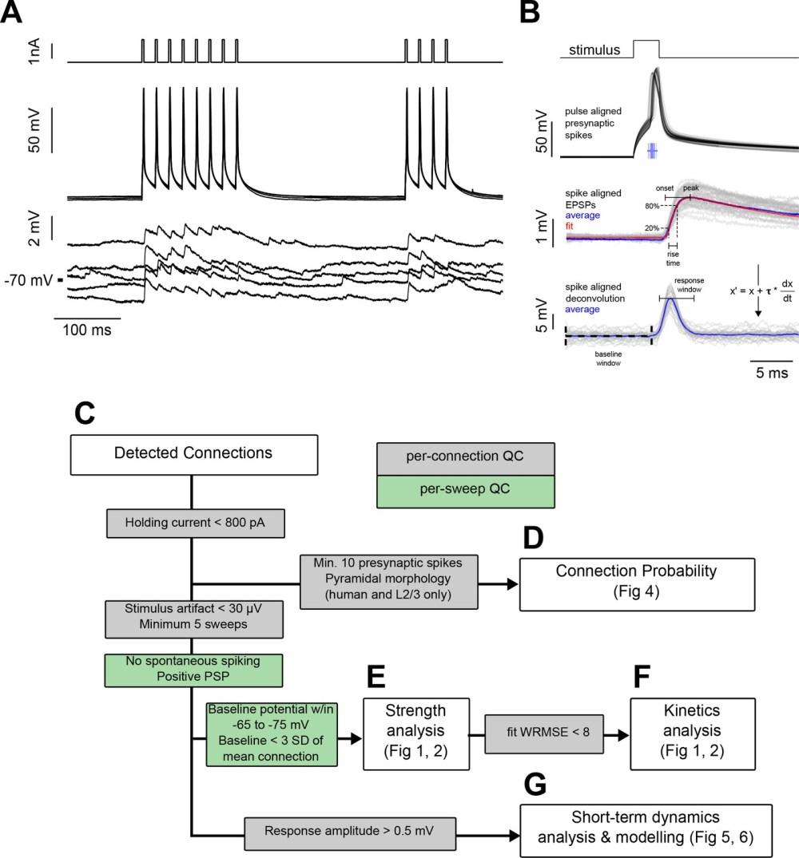 medium resolution of experiment methodology and analysis workflow