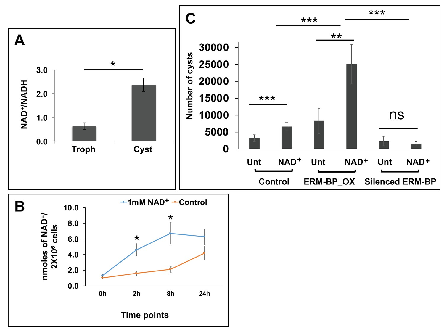hight resolution of intracellular nad nadh is elevated during encystation and nad facilitates encystation
