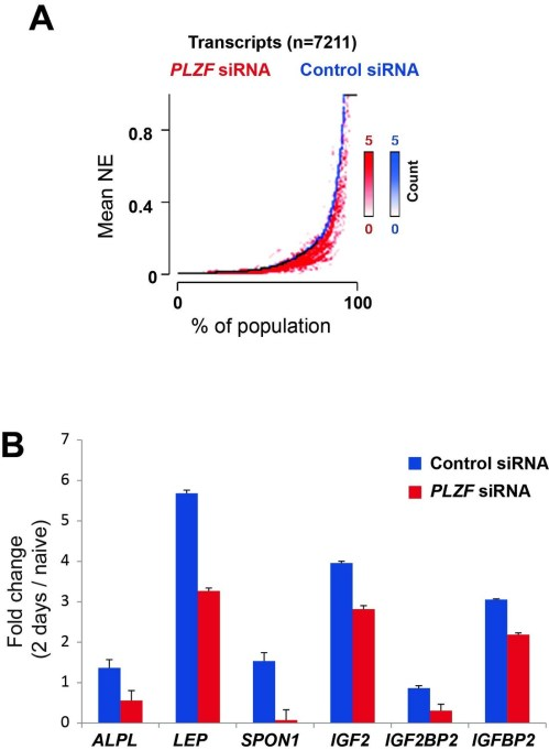 small resolution of a transcriptome analyses by rna seq after sirna oligo 57 mediated plzf knockdown followed by osteogenic induction was performed in biological
