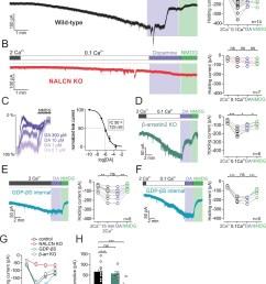 d2 receptor activation inhibits nalcn through a g protein dependent mechanism  [ 1164 x 1500 Pixel ]