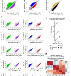 genome wide visualization of accessible chromatin differences by ec tissue type in wt vs beta catenin stabilized samples  [ 1159 x 1500 Pixel ]