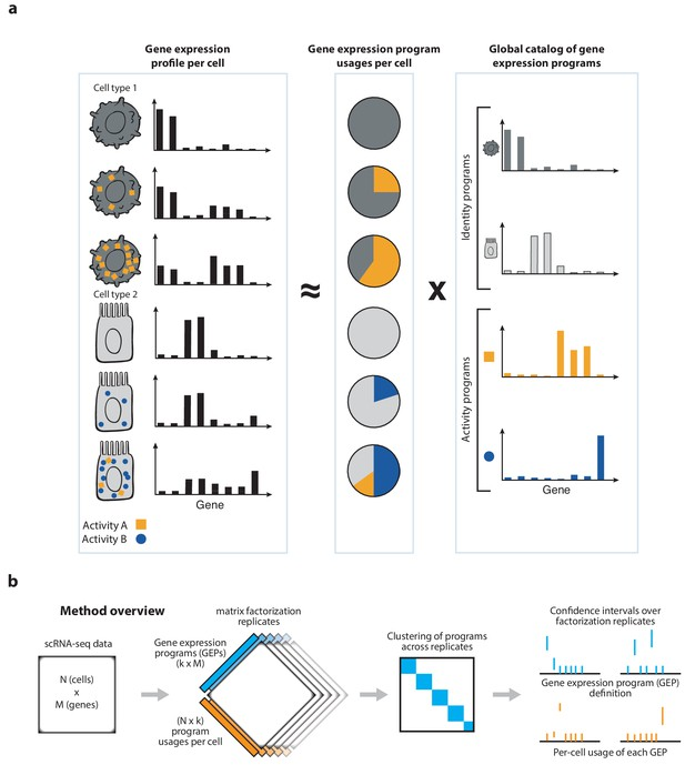 Identifying gene expression programs of cell-type identity