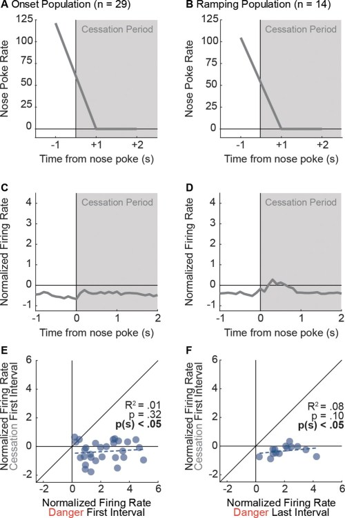 small resolution of nose poke cessation is insufficient to drive activity of onset and ramping neurons