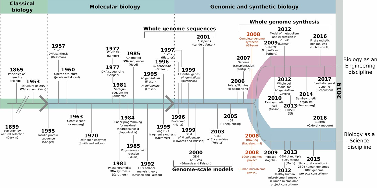 hight resolution of synthetic biology and minimal cells an historical perspective